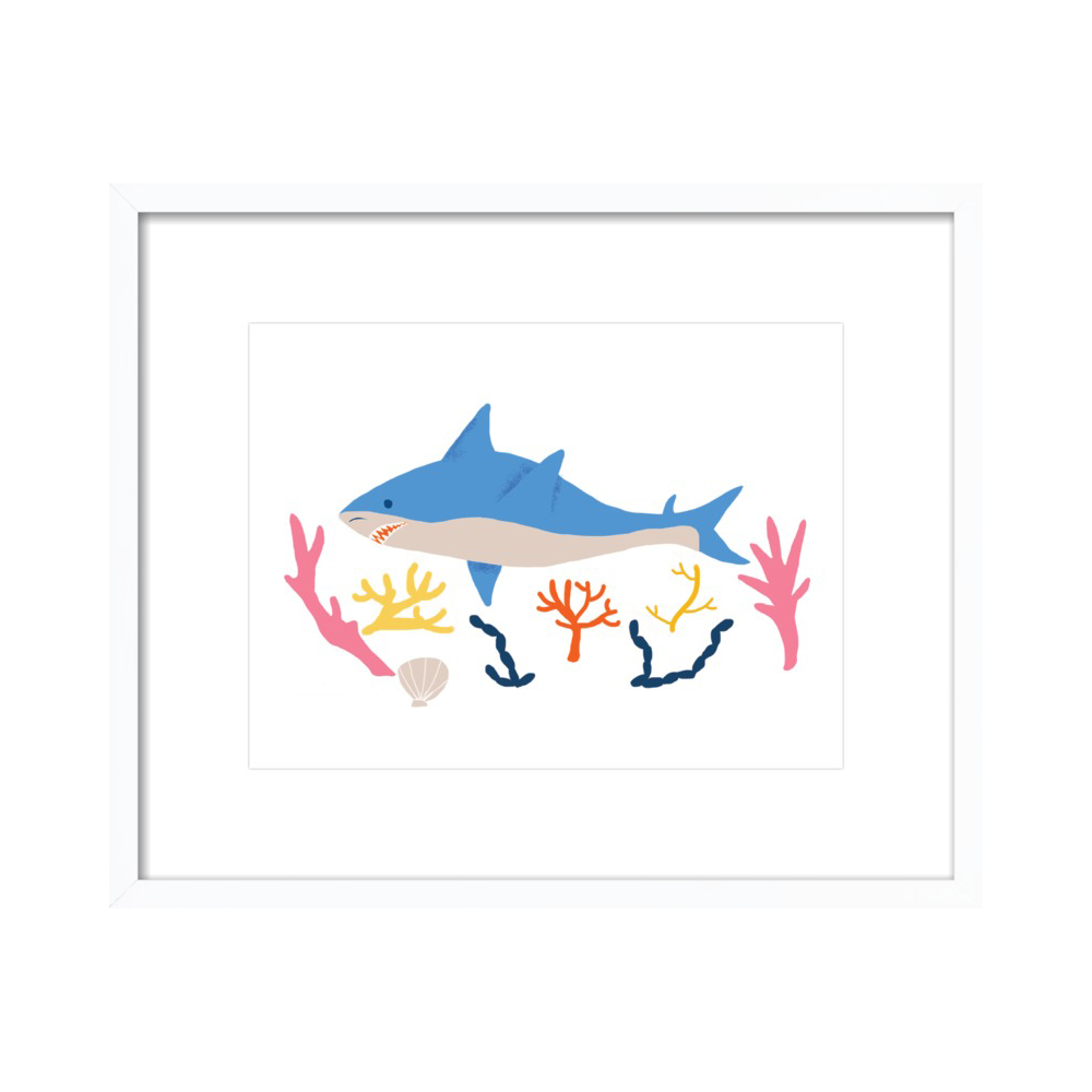 Shark by Naomi Wilkinson