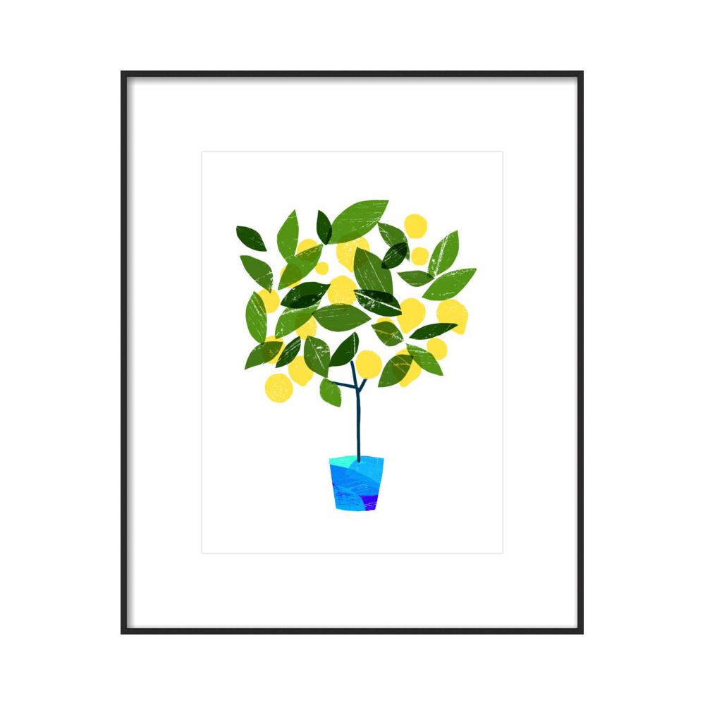 Meyer Lemon Tree / White  BY ANA ZAJA PETRAK