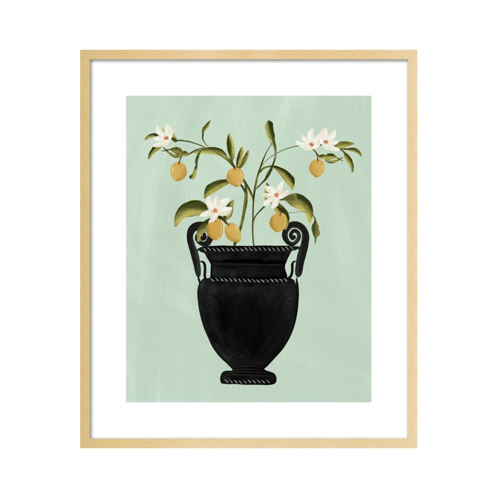 Botanical Illustration No. 2  BY NANCY NORETH