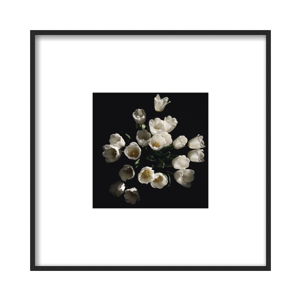 Floral 4  BY ERIK MELVIN