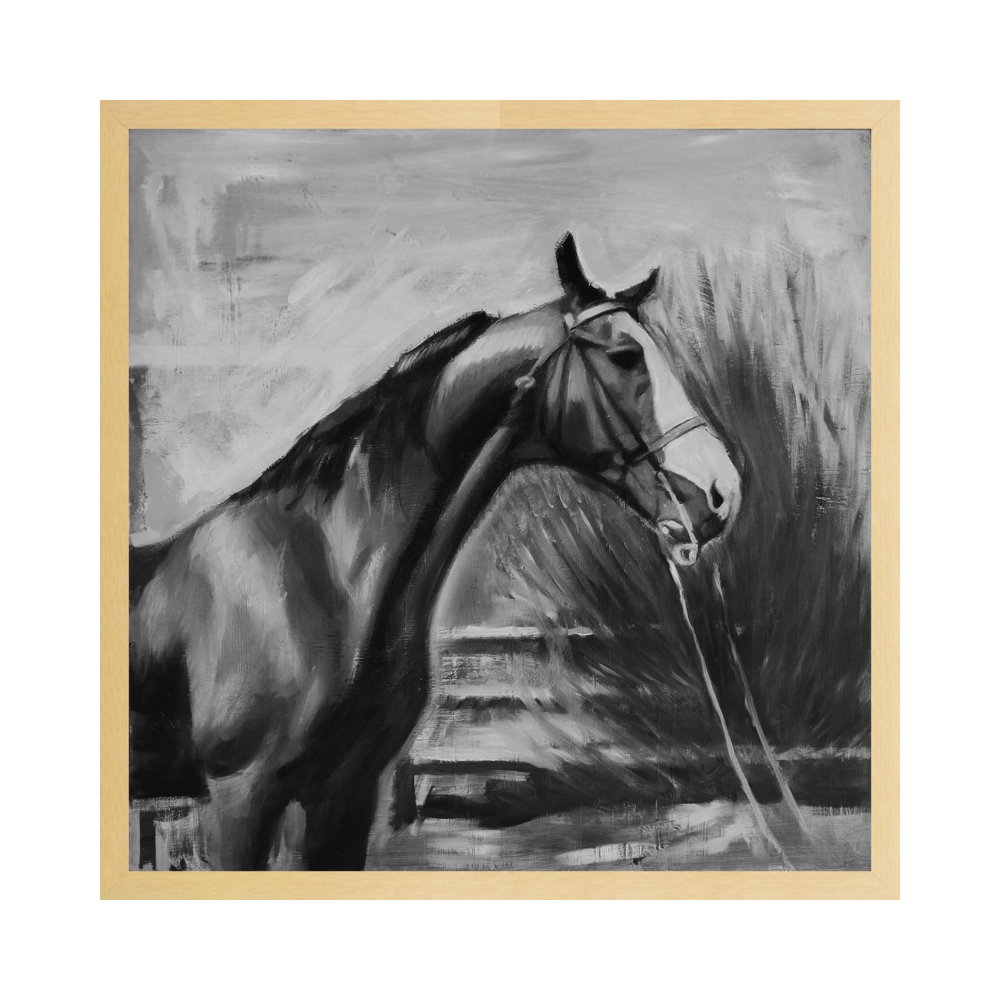 horse with fence (black and white)  BY MARY SINNER
