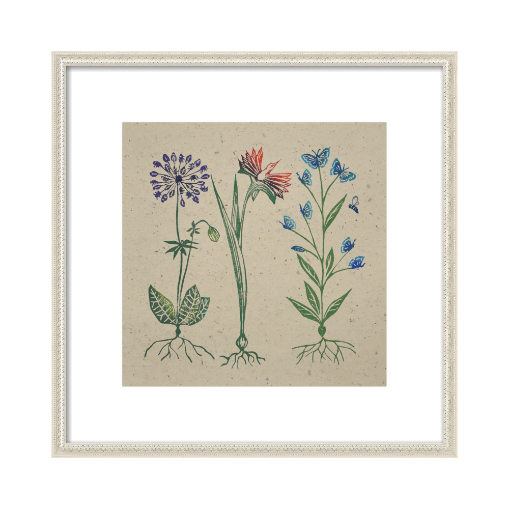 Botanical Peculiarities  BY JANE KENDALL