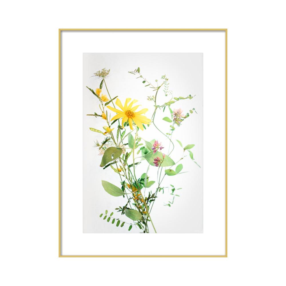 A Bunch of Wild Flowers  BY QING JI