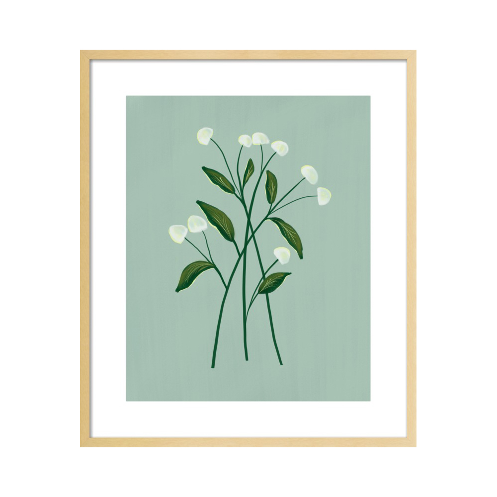 Botanical Illustration No. 1  BY NANCY NORETH