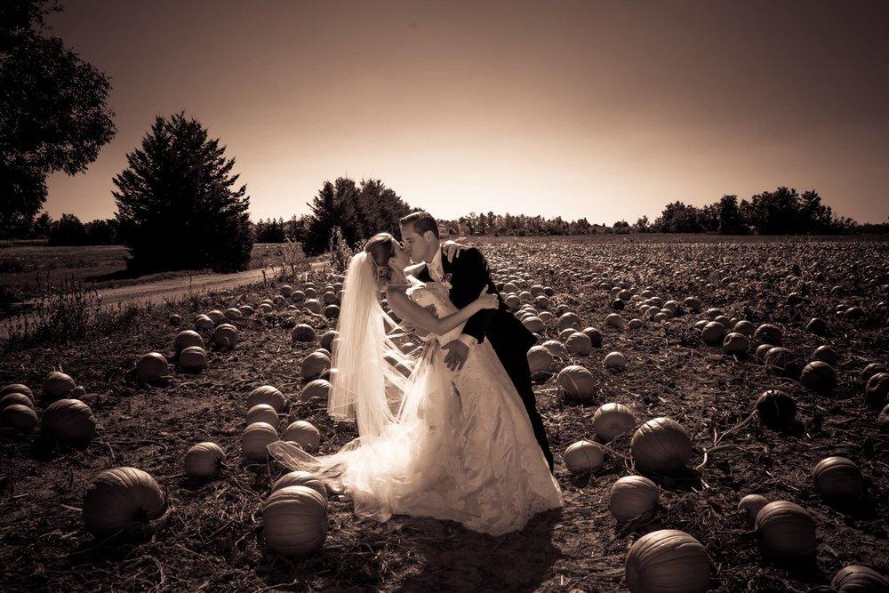 Dip in the Pumpkin patch