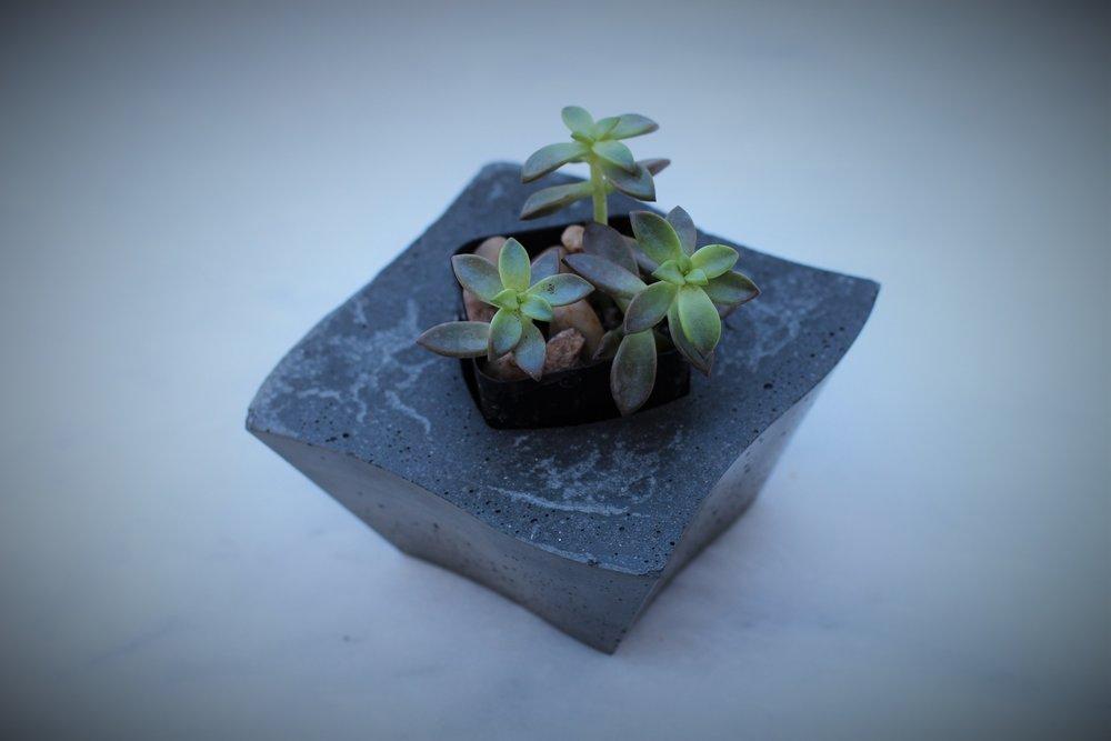 grey planter enhanced.jpg