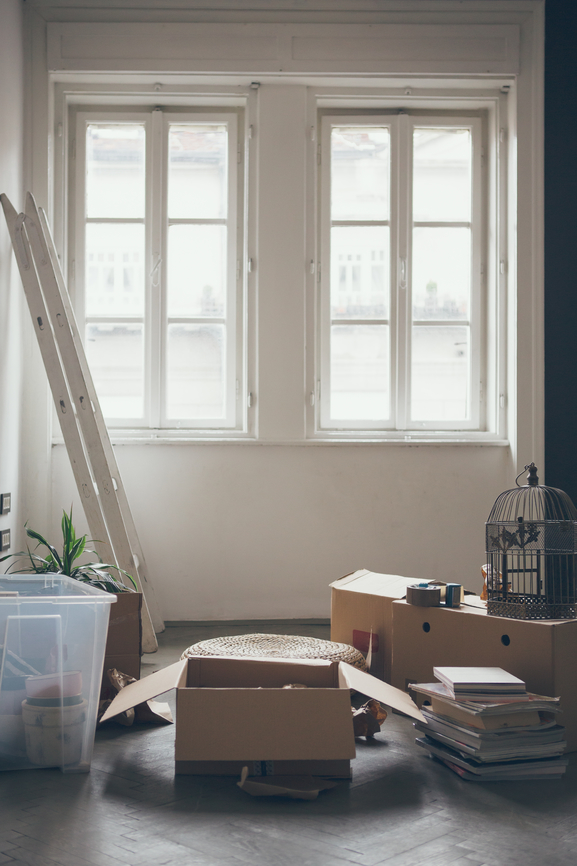 Boxes of home decor items and furnishings  in front of a bright window.