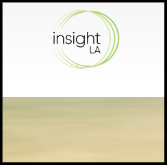 insightla cover.png