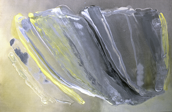 "CANARY, 1983, A crylic on canvas,  52"" x 79.5"""