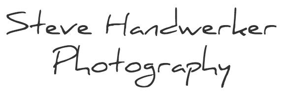 Steve Handwerker Logo LOW RES-SQUARE_trans.png