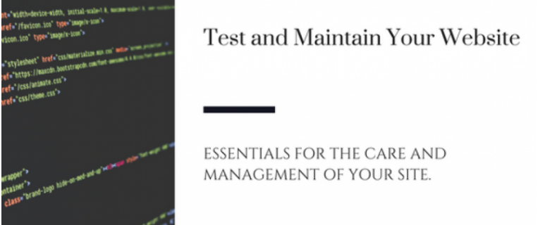 Test and Maintain Your Website by Tamara