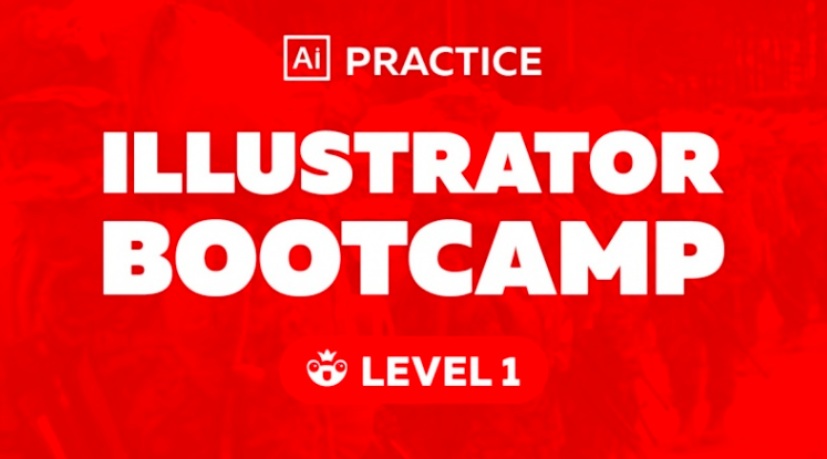 Anastasia  will provide you with everything you need to know to get comfortable in Illustrator.