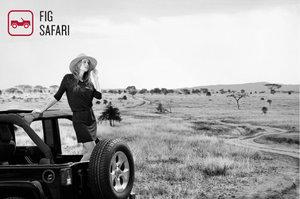 safari_ady.jpg
