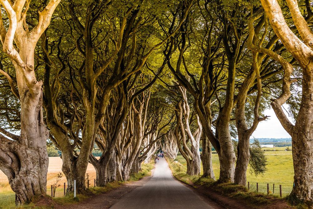 7 Days Around Ireland With Shamrocker Adventures // #readysetjetset #ireland #cliffsofmoher #belfast #travel #northernireland www.readysetjetset.net