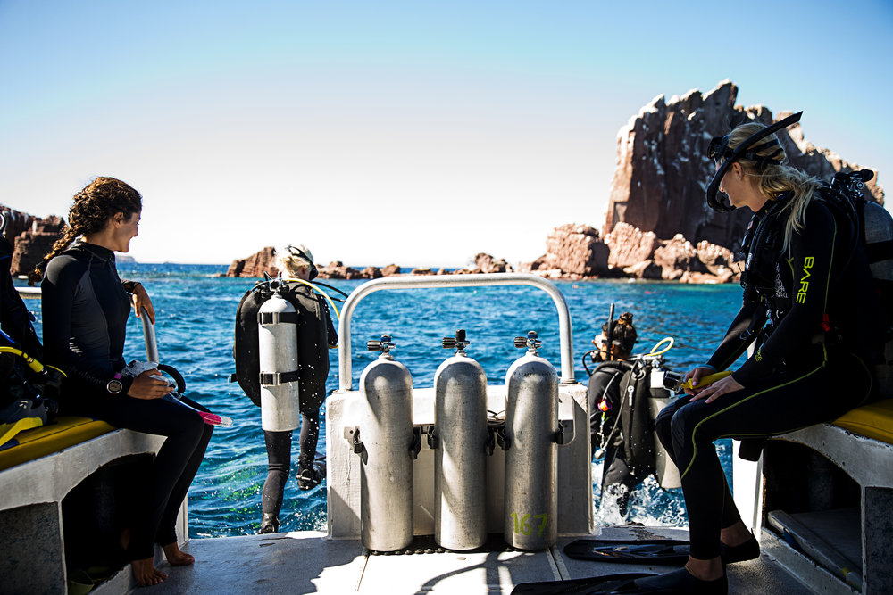 5 Reasons Every Woman Should Get Certified to Scuba Dive // www.readysetjetset.com #travel #diving #scubadiving #beaches #ocean #readysetjetset