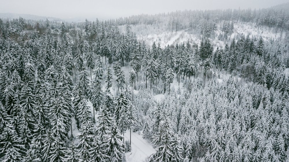 Thuringian Forest from above