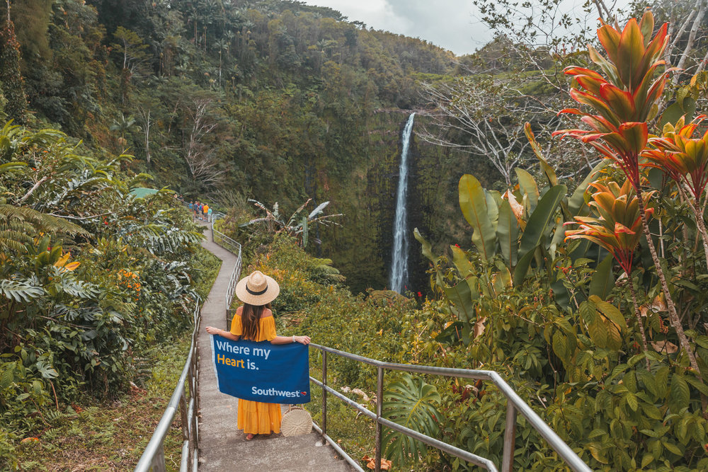 Akaka Falls  // 10 Things You Have to Do on the Big Island of Hawaii // www.readysetjetset.net #readysetjetset #hawaii #bigisland #blogpost #hawaiiguide