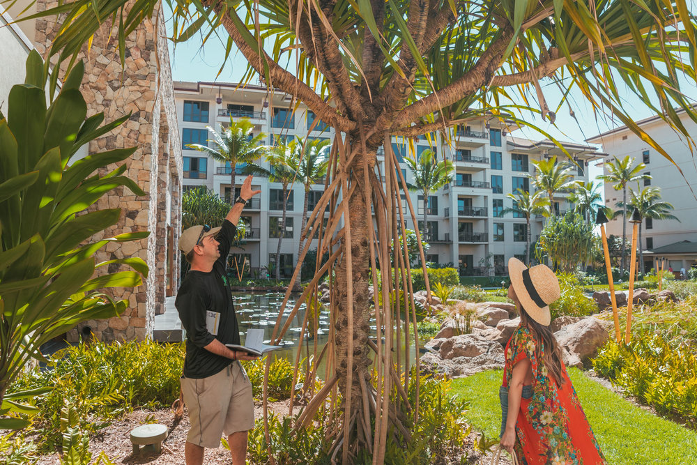 Botanical tour at Westin Nanea  // The Quick Guide to Visiting Maui, Hawaii #readysetjetset #hawaii #maui