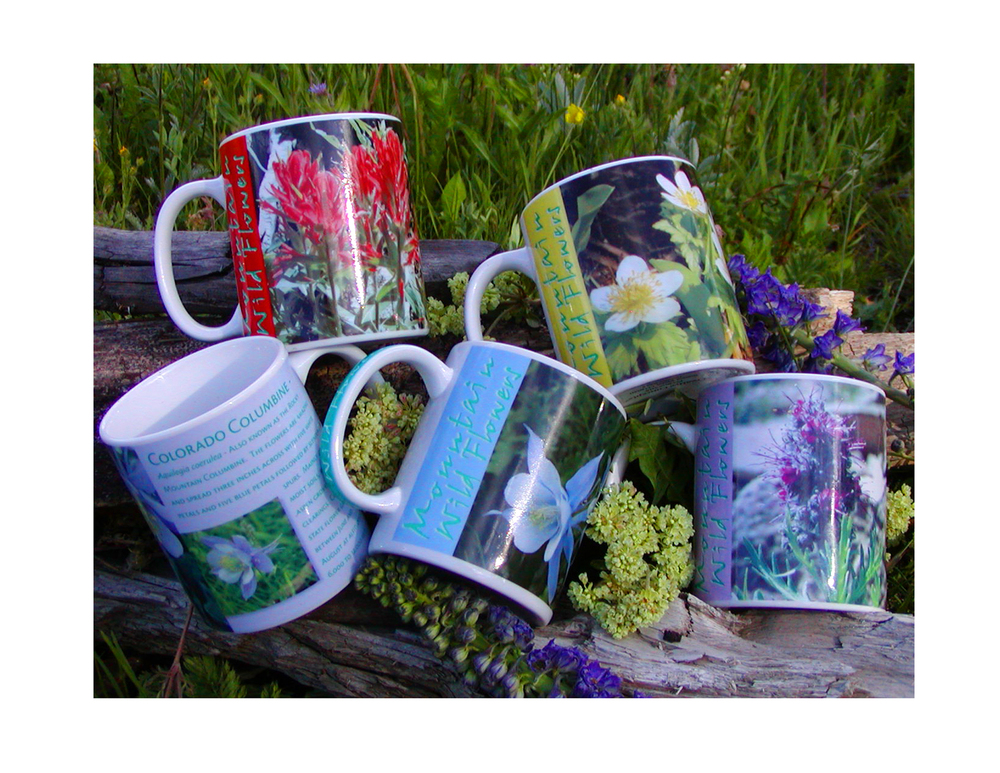 WildflowerMugs2.jpg