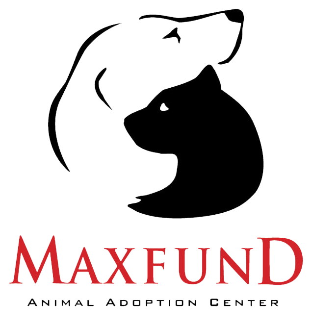 MaxFund_logo_TRANS.png