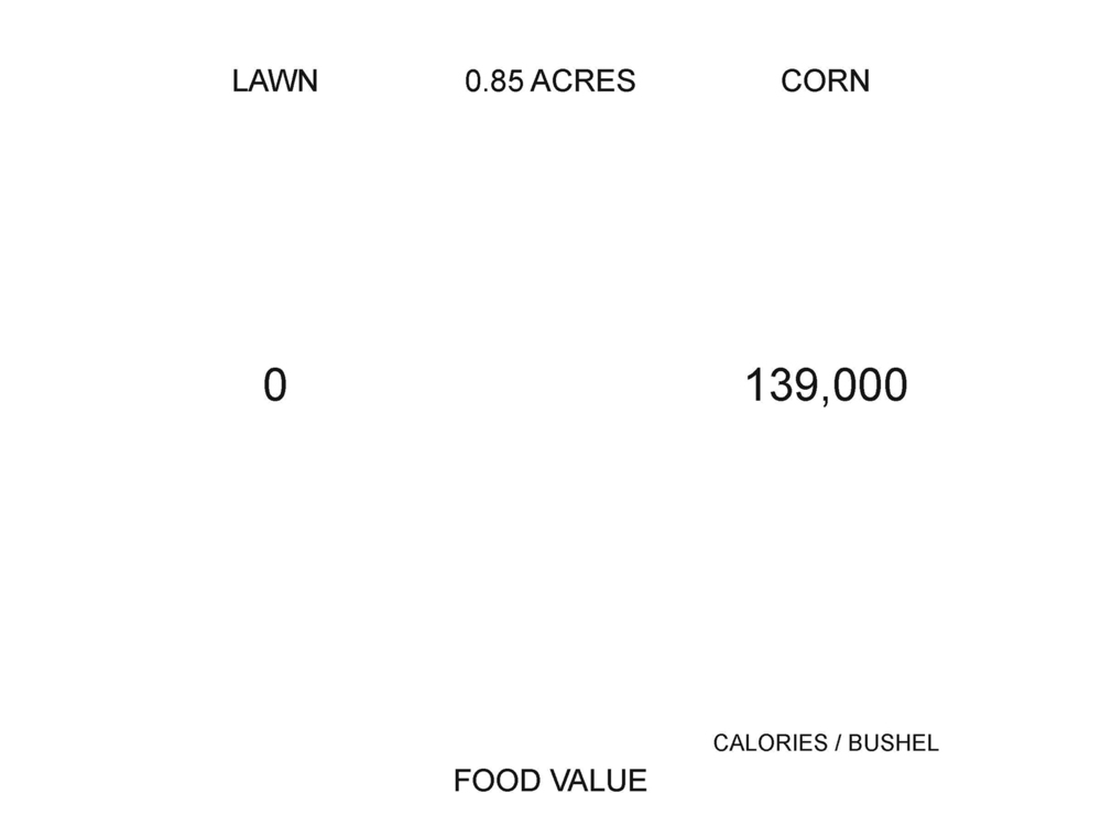 Food value of each