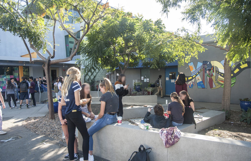A view of Ray Charles Park, an informal landscape designed in collaboration with students,  that provides many opportunities for seating and gathering.