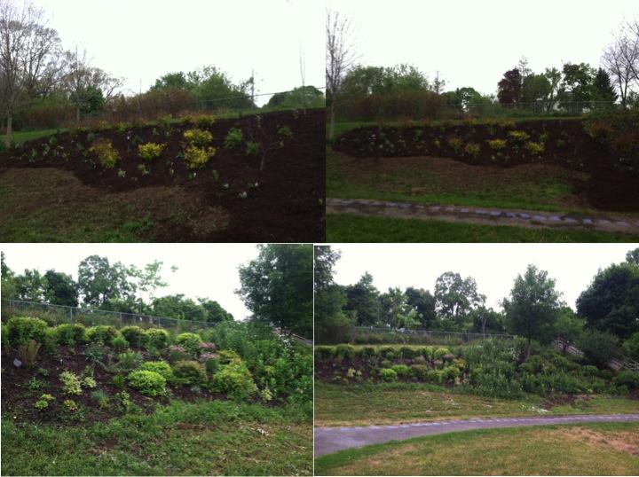 Ed Smith Sustainable Garden