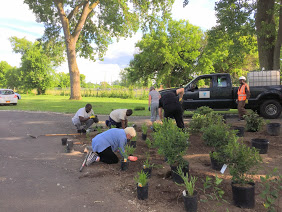 Circle Planting along the Creekwalk