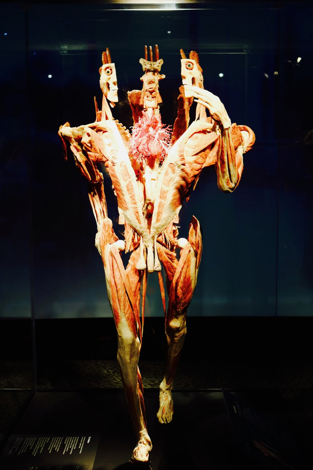 The Walker: Stress affects our mental and physical well-being in either positive or negative ways  Photo by: DJB for TBOT
