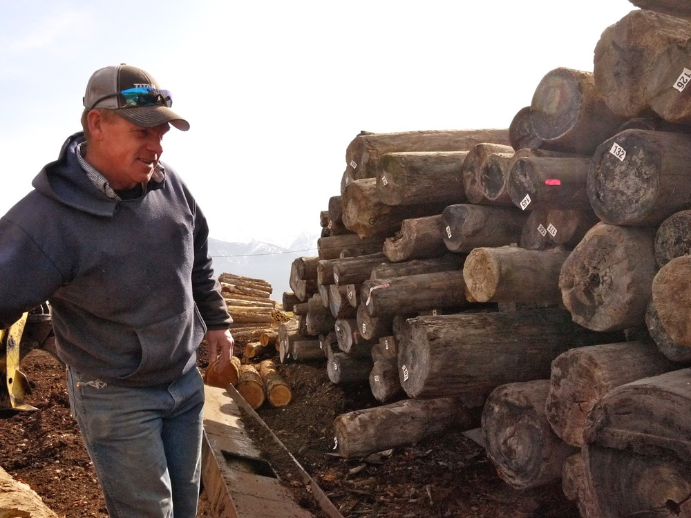 Rusty Hunt surveys a stack of old-growth logs salvaged from Flathead Lake. Hunts Timbers, St. Ignatius, Montana. (Photo by Emily Stifler Wolfe)