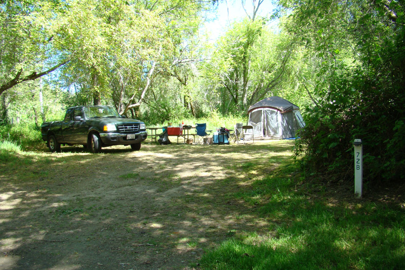 tentcamping15.jpg