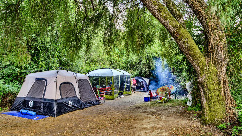 Casini-Tent-Site-42_IMG_1352.jpg