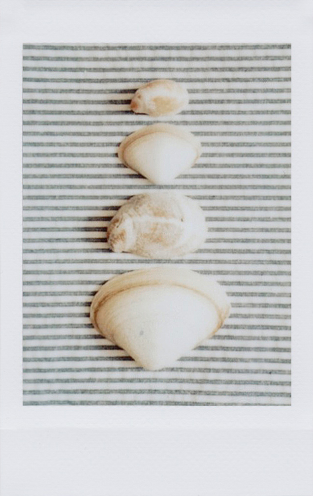 256d968242d0 instax summer   style - part 1 — caitlin cawley