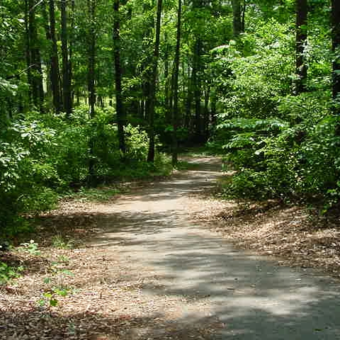A Place to GET AWAY - WALKING TRAILS