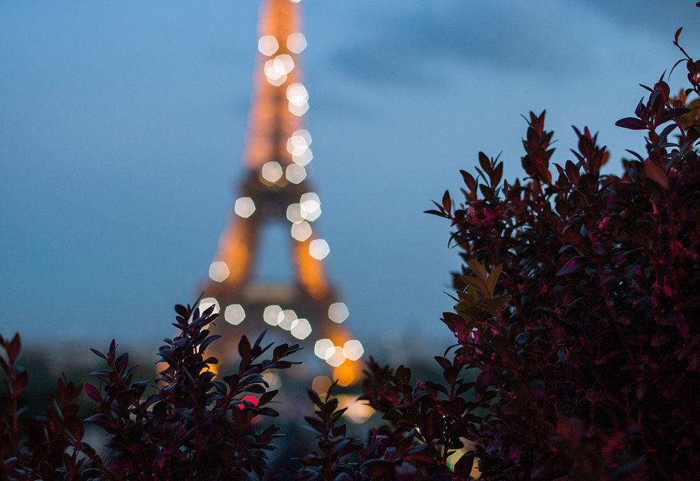eiffel tower sparkle cafe de l'homme @rebeccaplotnick