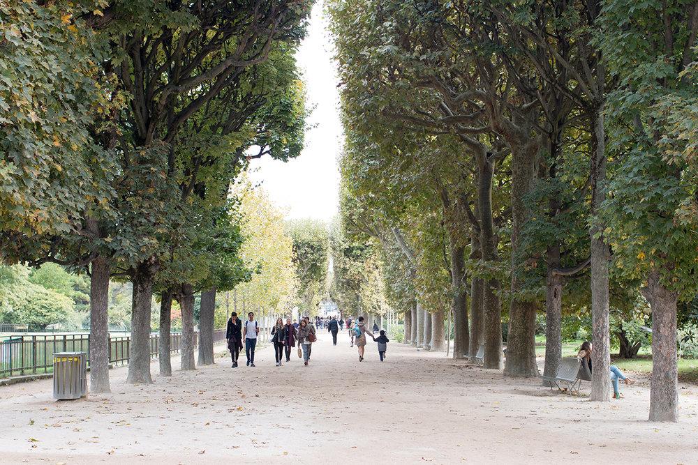 jardin des plantes Paris, France @rebeccaplotnick