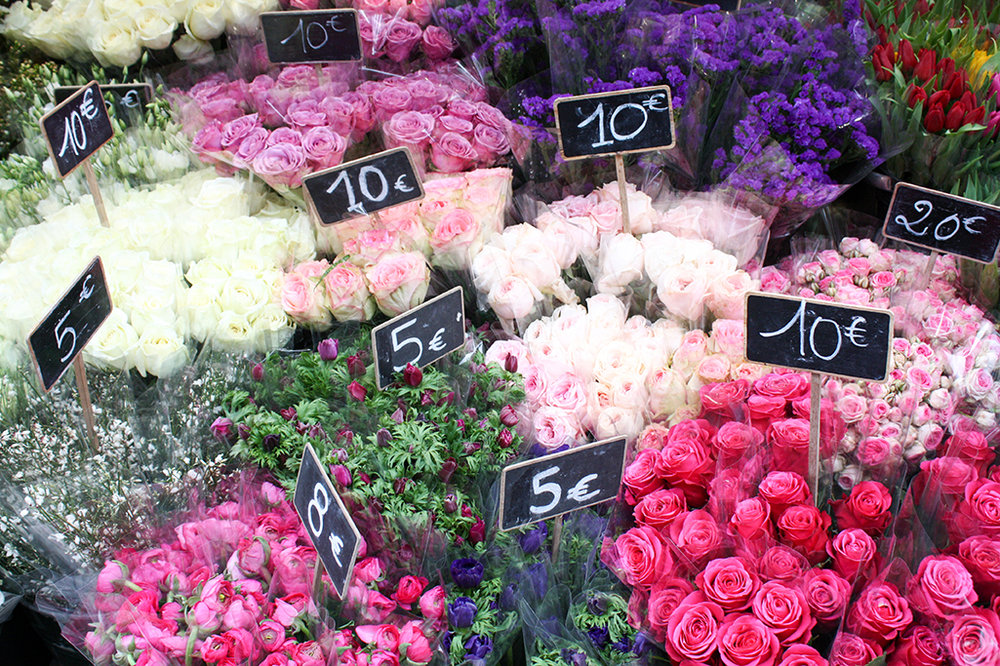 Paris Flowers Pretty in Pink