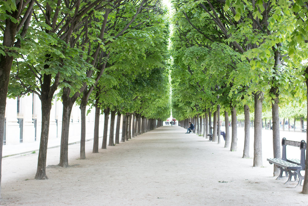 palais royal paris diaries rebecca plotnick
