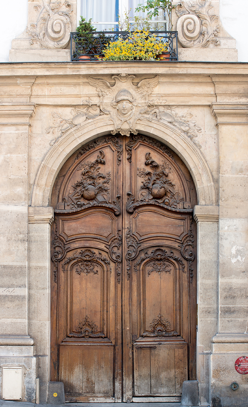 paris brown door on the left bank by Rebecca Plotnick
