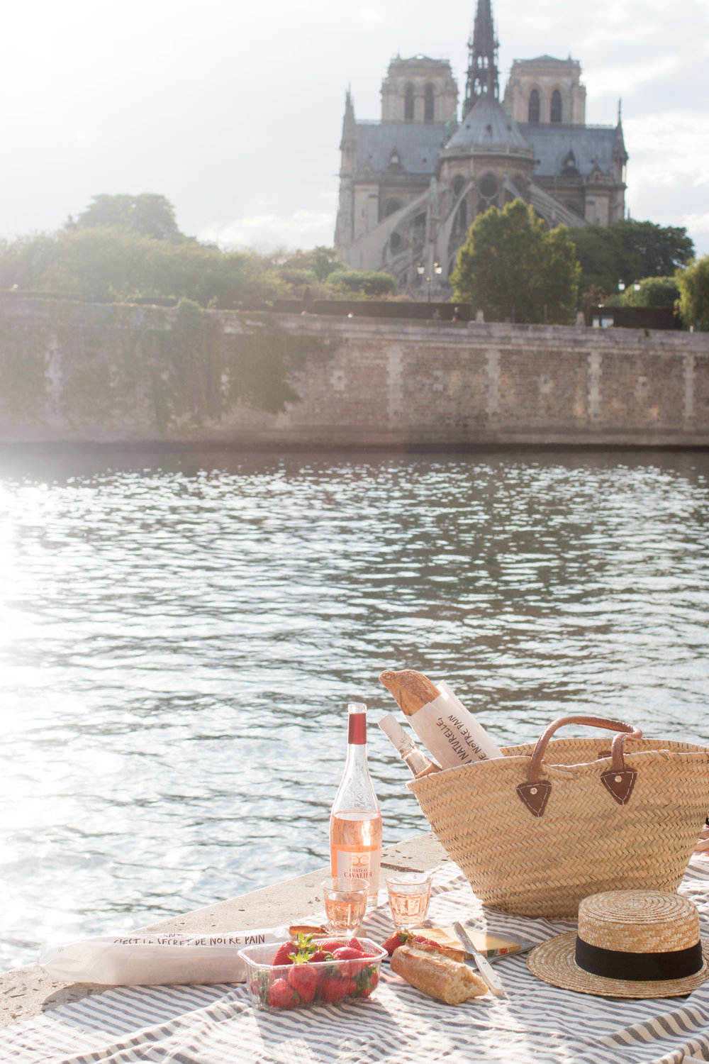 picnic on the seine overlooking notre dame paris, france