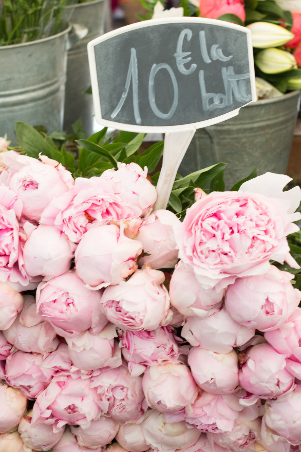 where to buy peonies in paris,france via everyday parisian and rebecca plotnick