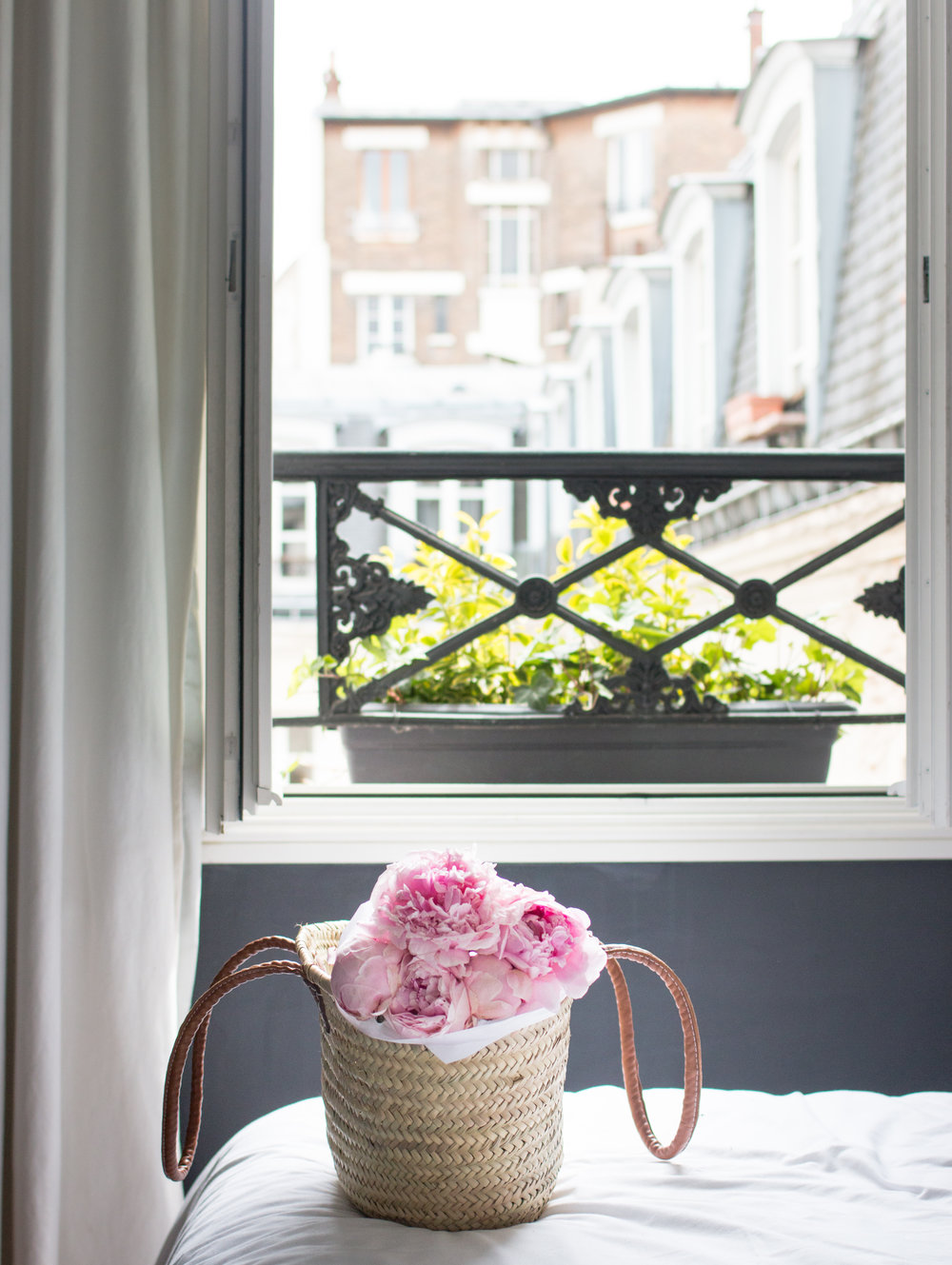 where to find peonies in paris via everyday parisian and rebecca plontnick