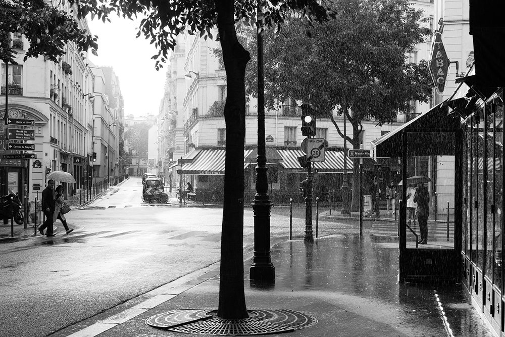 paris in the rain black and white