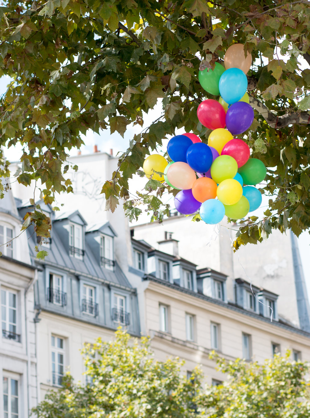 ballons in parisian apartments