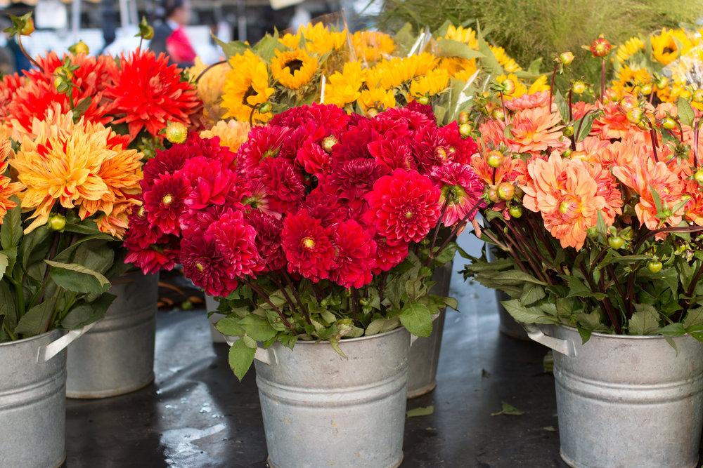 bastille market flowers