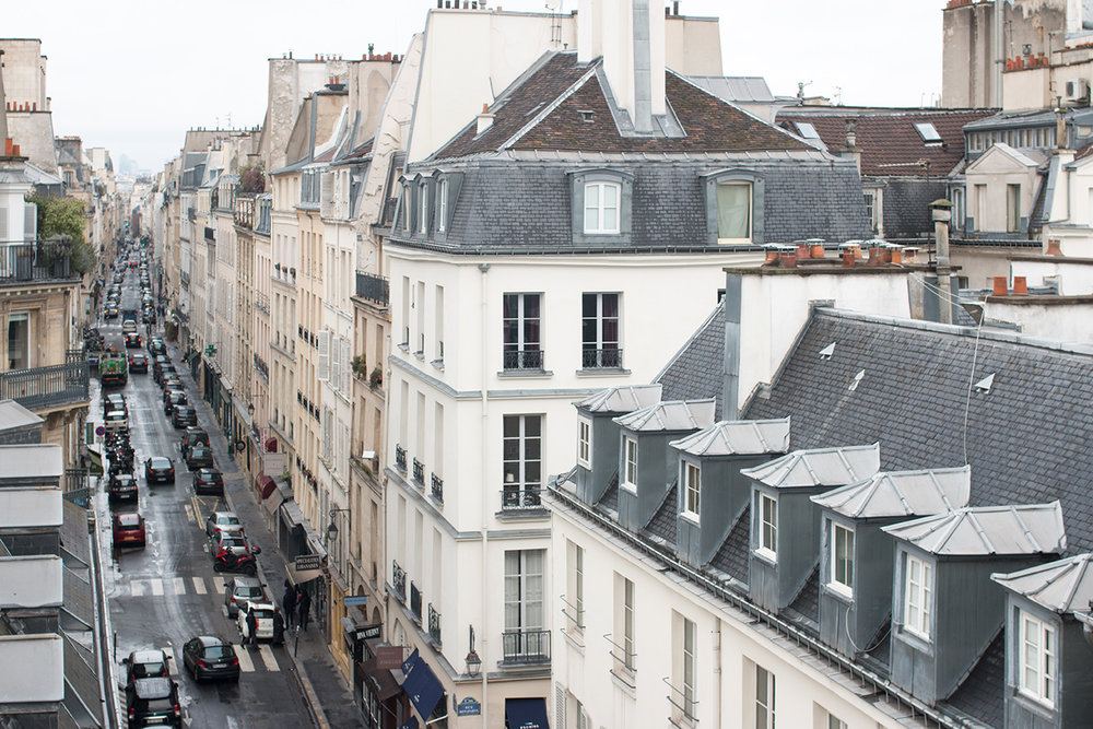 parisian rooftop view left bank