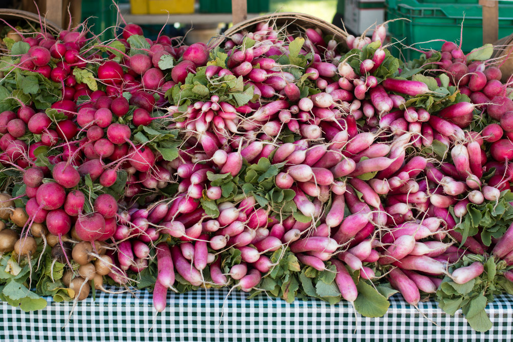radish market photo rebecca plotnick