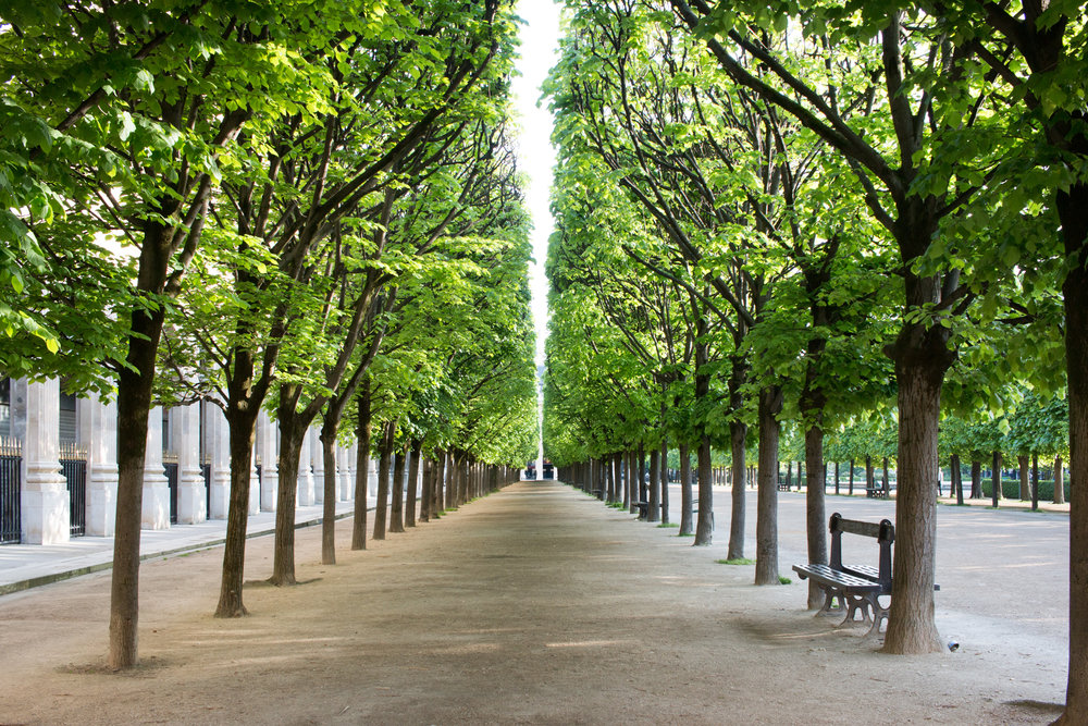 palais royal gardens paris france
