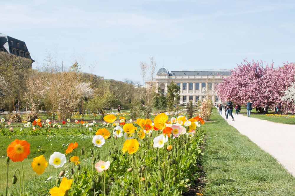 jardin des plantes paris france