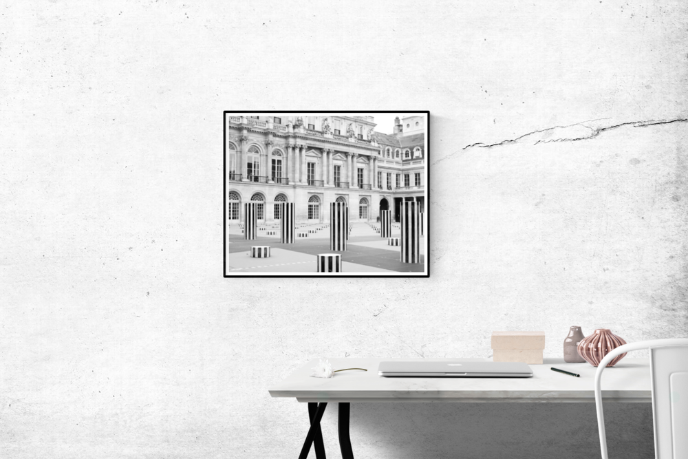 palais royal in black and white by rebecca plotnick